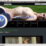 Illusionmodel.com Free Account Login