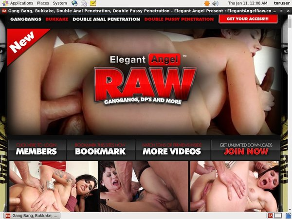 Elegant RAW Access Free