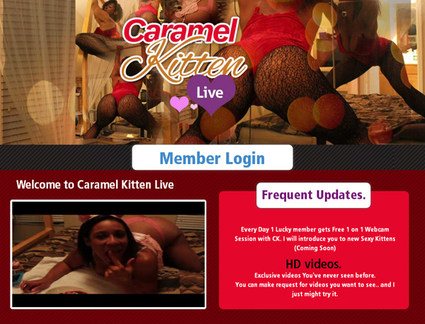 Caramel Kitten Live Password Share